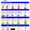 Poultry / Chicken Bell drinkers for sale